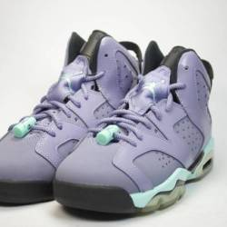 Air jordan 6 iron purple