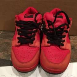 Nike sb true red dunk low