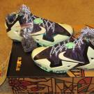 "DS Nike Lebron XI ""Gator King"" All Star Size 11"