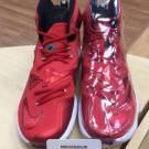 Vnds Nike Lebron XIII